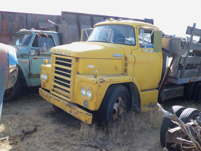 1967 Dodge COE C600 440 5spd motor smokes Make Offer Trades Welcome